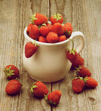 Ripe Forest Strawberries Stock Photos