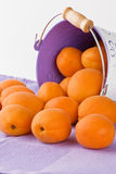 Ripe fresh apricot Stock Images