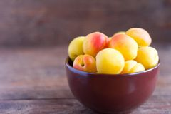 ripe fresh apricots in a bowl on a wooden table stock photo