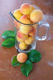 Ripe fresh apricots in jar Stock Photography