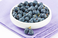 Ripe fresh blueberry Stock Images