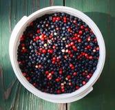 Ripe fresh blueberry Royalty Free Stock Images