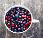 Ripe fresh blueberry Stock Photo