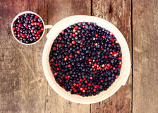 Ripe fresh blueberry Royalty Free Stock Photos