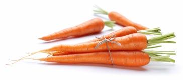 Ripe Fresh Carrots Royalty Free Stock Image