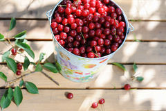 Ripe fresh cherries in a colored bucket and ripe cherries with leaves on wooden table Stock Photos