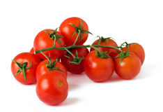 Ripe fresh cherry tomatoes on branch. On a white background royalty free stock photos