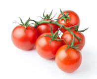 Ripe fresh cherry tomatoes on branch Isolated on white backgroun. Ripe fresh cherry tomatoes on branch Royalty Free Stock Photography
