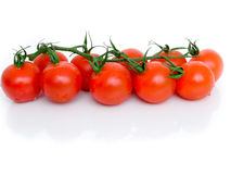 Ripe Fresh Cherry Tomatoes. On Branch Isolated on White Background Stock Images