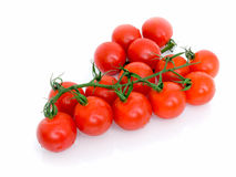 Ripe Fresh Cherry Tomatoes. On Branch Isolated on White Background Royalty Free Stock Photo