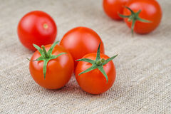 Ripe Fresh Cherry Tomatoes on Coarse Fabric. Or Bagging Background Royalty Free Stock Images