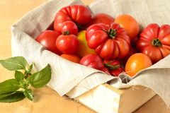 Ripe fresh colorful tomatoes Stock Photography