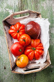 Ripe fresh colorful tomatoes in wooden box Stock Images
