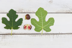 Ripe fresh fig fruits and leaves Royalty Free Stock Image