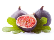 Ripe fresh Fig Stock Images