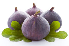 Ripe fresh Fig. Royalty Free Stock Photos