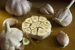 Ripe fresh garlic Royalty Free Stock Images