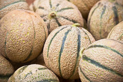 Ripe fresh melons pile in a market Royalty Free Stock Images