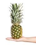 Ripe fresh pineapple isolated on white background Royalty Free Stock Photos