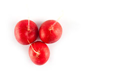 Ripe fresh radish. On white background Royalty Free Stock Photos