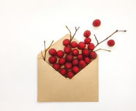 Ripe Fresh Raspberries In An Envelop On White Background. Stylish Flat Lay. Minimal Concept Royalty Free Stock Photo