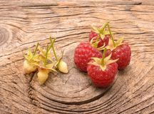 Ripe fresh raspberries Royalty Free Stock Photos