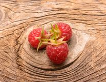 Ripe fresh raspberries Stock Images