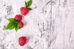 Ripe fresh raspberry close up. Food ingredients Royalty Free Stock Photo