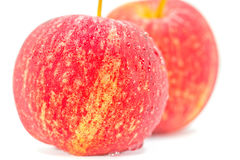 Ripe and fresh red apples Royalty Free Stock Image