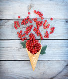 Ripe fresh red currants in ice cream waffle cone on rustic wooden background Stock Image