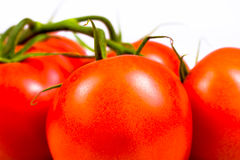 Ripe fresh red tomatoes Royalty Free Stock Images
