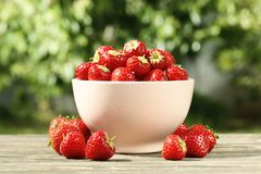 Ripe fresh strawberries in a bowl against the background of the garden royalty free stock photos