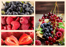 Ripe fresh summer berries collage Royalty Free Stock Photography