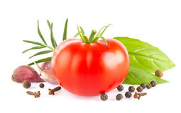 Ripe fresh tomato with herb and garlic Stock Photos