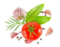 Ripe fresh tomato with herb and garlic Stock Photography