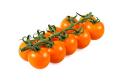 Ripe Fresh Yellow Baby plum tomatoes, on branch. isolated Royalty Free Stock Photo