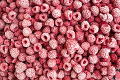 Ripe frozen raspberries top view. Royalty Free Stock Photos