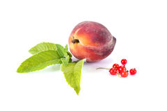 Ripe fruit and leaves of mint Stock Photo