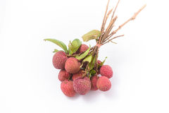 Ripe fruit of the lychee (Litchi chinensis) Royalty Free Stock Photography