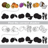 Ripe fruit set. Find correct shadow. Ripe fruit set with shadows to find the correct one. Compare and connect objects and their true shadows. Easy educational Stock Photography