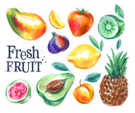 Ripe fruit vector logo design template. fresh food Royalty Free Stock Photos