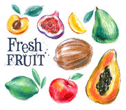 Ripe fruit vector logo design template. fresh food Royalty Free Stock Photography