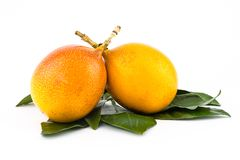 Ripe fruit yellow passion fruit grenadilla two juicy fruits on a background of green leaves royalty free stock photos