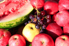 Ripe fruits apples watermelon and grape. Crop of August ripe fruits apples watermelon and grape Royalty Free Stock Photos