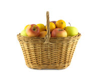 Ripe fruits and apples in wicker basket  Stock Photography