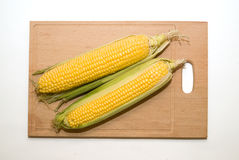 Ripe fruits of corn on over white Royalty Free Stock Photography