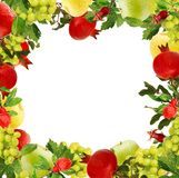 Ripe fruits decorative frame. Harvest Stock Photo