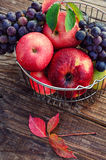 Ripe fruits in the iron basket Stock Photography