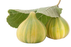 Ripe Fruits Of A Fig Stock Images