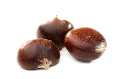 Ripe fruits are sweet chestnut. Royalty Free Stock Images